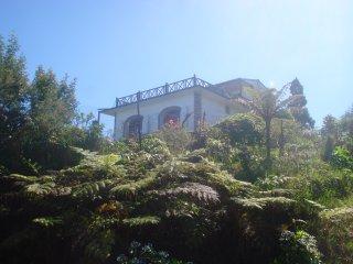 Maison de charme - La Forêt de Petite France, Saint-Paul