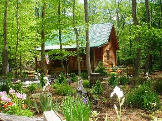 Enjoy Autumn Here! Creekside Cabin w/Hot Tub, WiFi, Fire Pit & Pets Allowed!, Todd