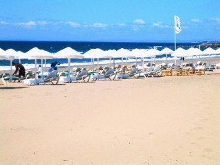 Delighful Apartment on the Beach. 330, Marbella