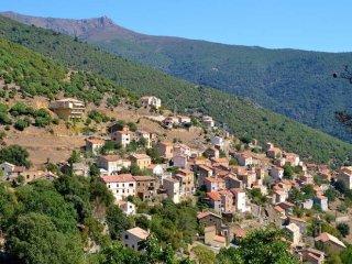 Location estivale studio a ASCO en Haute Corse