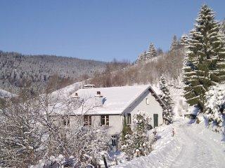 Ferme a Jacques - Gite Les Pistes avec sauna en Hautes Vosges