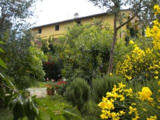 bella casa di campagna Colline del Chianti-vicini a Firenze, Montespertoli