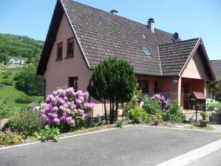 Entre vignes et montagne gîte 4 personnes 5km de KAYSERSBERG