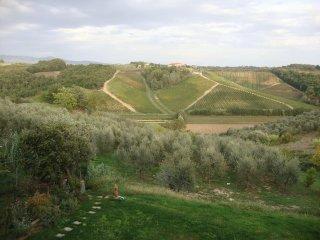 in borgo storico, colline toscane, Cerreto Guidi