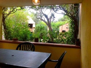 Il giardino visto dalla veranda, sullo sfondo il barbecue.