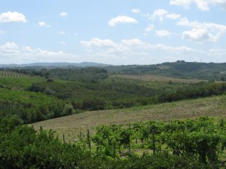 Firenze Incantevole Villa Panoramica nel Chianti, Bagno a Ripoli