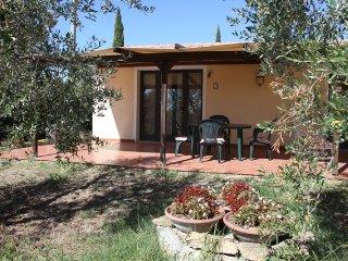 Casa vacanze - Vigna Lontana 2, Montescudaio