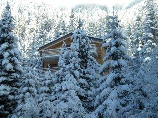 Superbe chalet au coeur de la forêt, Champex