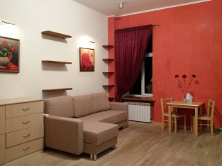 1-room apt. with author`s design, center, Kiev