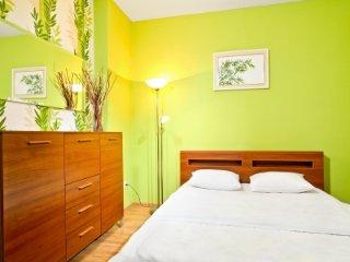 Cozy one bedroom apartment, Kiev