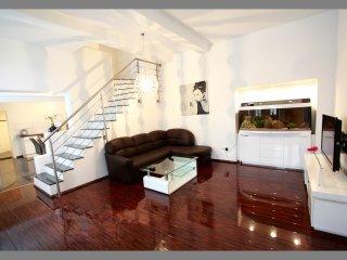 Luxuriöse 70 m2 Loft-Whg. Zentral