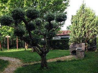 """appartamento in rustico a 500 metri dal mare""""olivo, Rosignano Solvay"""