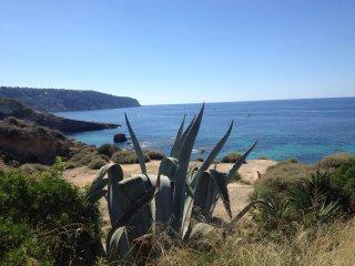 Planta baja con jardin en Puig de Ros