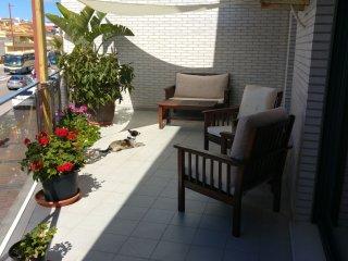 Excelente y amplio apartamento con terraza