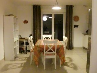 Grand appartement  dans maison neuve, Gagny