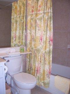 Guest Bath (Tub/Shower)