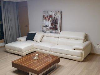 Premium Apartment (Gangnam, Seoul), Seúl
