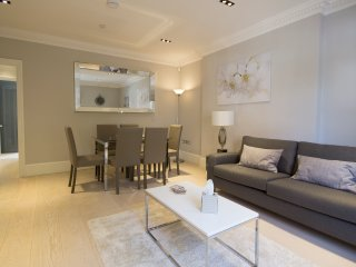 Luxury Two Bed Condo near Covent Garden