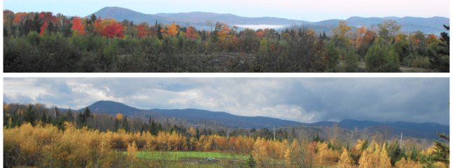 Foliage Views, to the West, of the Mts. from the Picture Window (Foliage Period: Late Sept to Oct 22