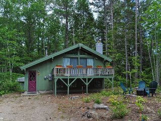 Private and Cozy 3BR Chalet Near Storyland! AC, Fire Pit, Cable & WiFi!