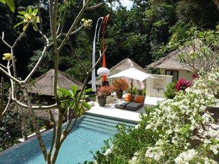 Villa Asri Cepaka Luxury stay in Bali Village