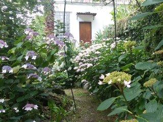 Il Giardino delle Ortensie appartamento arredato, Avegno