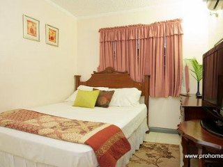 Jamaica Vacation Rental - Safe and Secure New Kingston Apartment