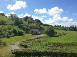 Beudy Clygo: Set in Peaceful Countryside - 63529, Machynlleth