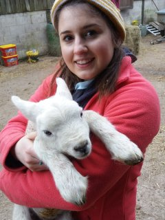 Cuddles at lambing time. Lambing Live from mid March to May - book your stay now