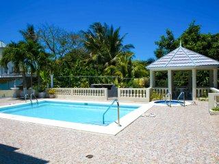 The big white villa with private pool