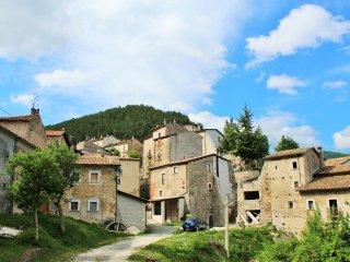 Cervo -  Parco Nazionale d'Abruzzo