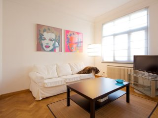 Spacious Rubin apartment in Uccle with WiFi, integrated air conditioning (hot /