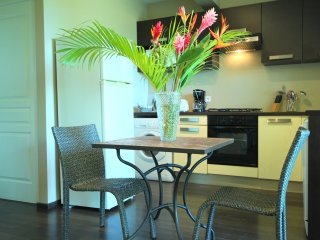 L'Oasis de Terre Rouge - Appartement Acacias - Cuisine