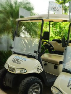 Golf cart available for rent upon payment of minor fee.