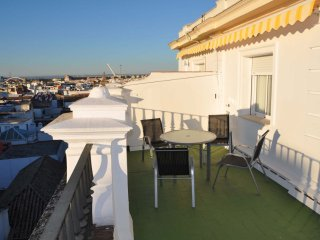 Laraña Terrace 2 apartment in Casco Antiguo with WiFi, air conditioning & lift.