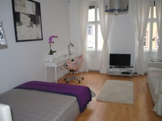 Canisiusgasse apartment in 09. Alsergrund with WiFi.