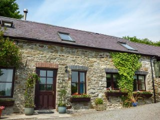 KITE COTTAGE, barn conversion, electric fire, countryside views, Llandysul, Ref 935575