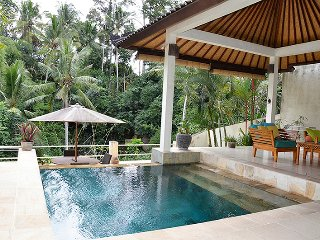 Villa Cenik-  private, secluded, magnificent views, Ubud