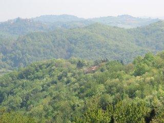 ..in una casa immersa nei boschi a 800 m. dal centro abitato