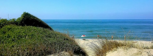 Free public beach in Ostia called Castel Porziano that is surrounded by sand dunes.