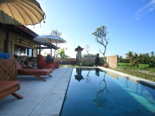 Villa D'Carik 2: villa in the rice fields of Sayan