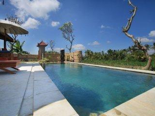 Villa D'Carik 2: villa in the rice fields of Sayan
