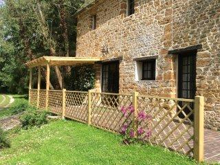 Terrace with pergola.