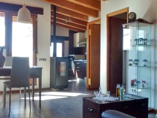Dos apartamentos rústicos con vistas y jardín, Arnes