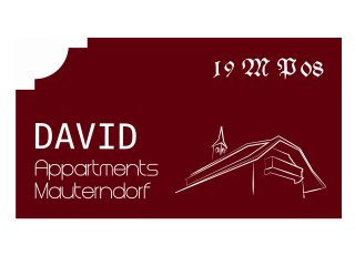 David Appartments - 3, Mauterndorf