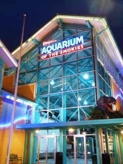 One of the best aquariums you'll ever visit!