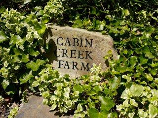 Cabin Creek Farm Franklin, TN