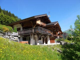 Mountain Xtra Chalet des Amis