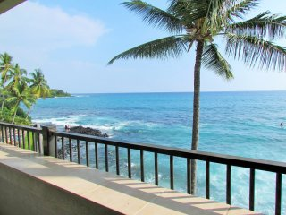 Tropical Oceanfront Oasis ~ Wall of Glass~ Breathtaking Ocean Views ~ Free WiFi, Kailua-Kona