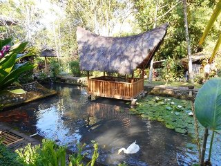 Mi Casa guest house, wooden house in the green, Banyuwangi
